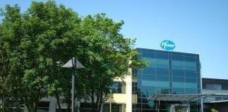 Pfizer-Werk erhält Umweltpreis
